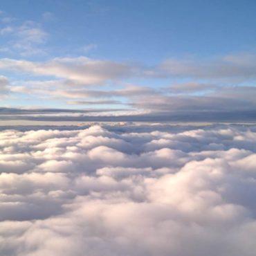 Google Flights Tutorial