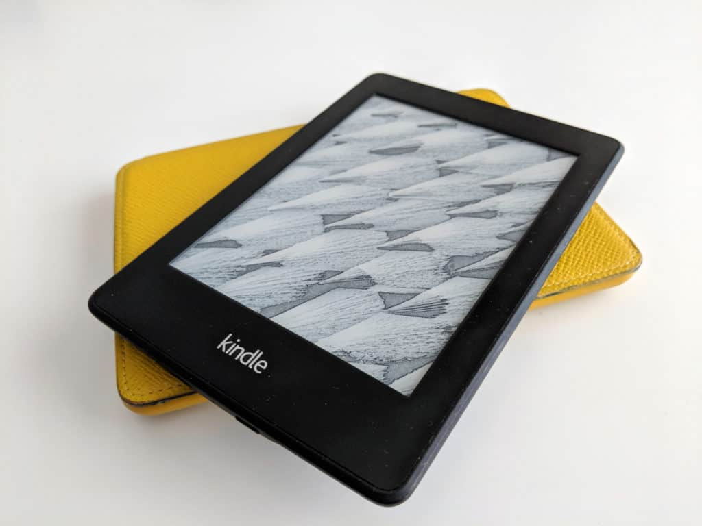 Travel Gear Kindle Paperwhite
